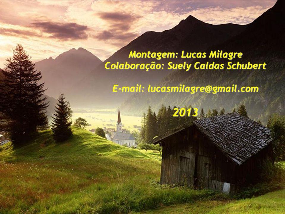 2013 Montagem: Lucas Milagre Colaboração: Suely Caldas Schubert