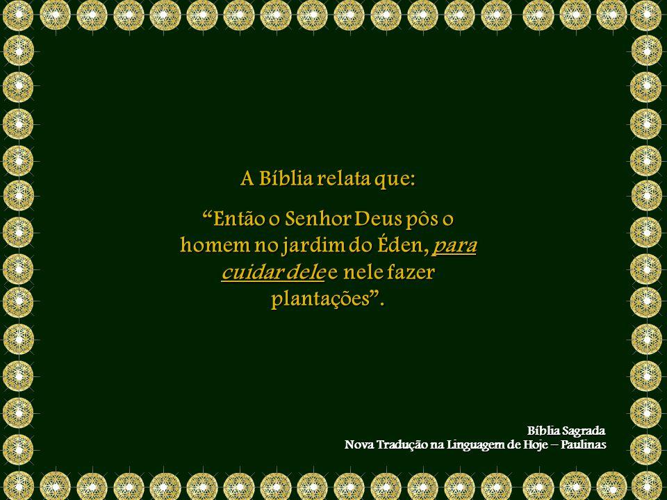 A Bíblia relata que: Então o Senhor Deus pôs o homem no jardim do Éden, para cuidar dele e nele fazer plantações .