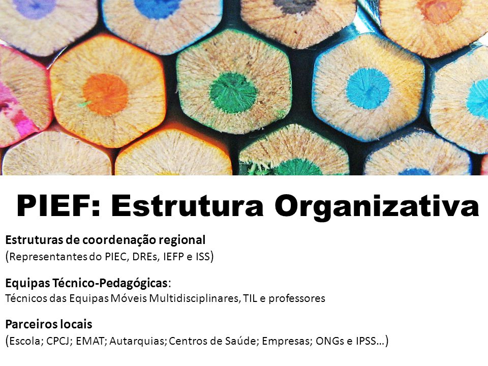 PIEF: Estrutura Organizativa