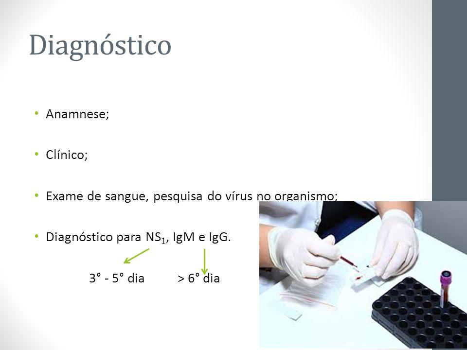 Diagnóstico Anamnese; Clínico;