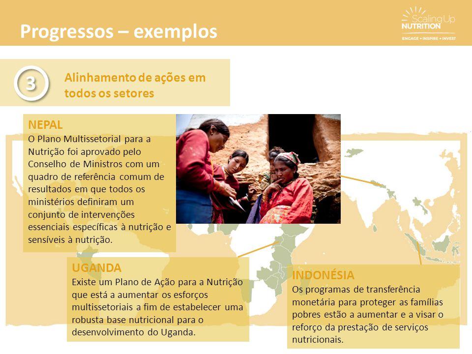 Progressos – exemplos 3 Alinhamento de ações em todos os setores NEPAL