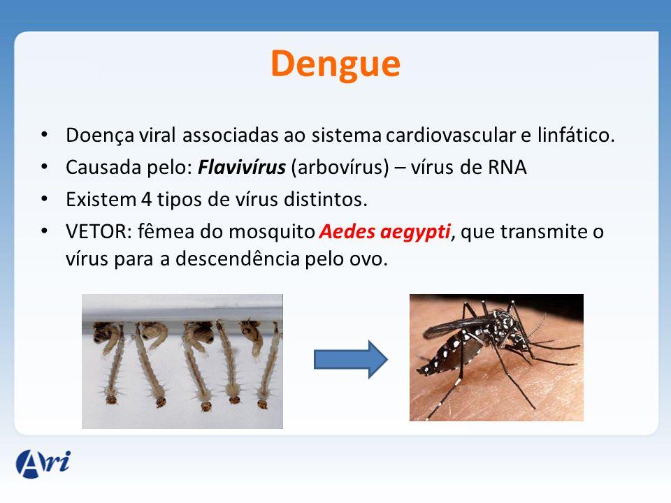 Dengue Doença viral associadas ao sistema cardiovascular e linfático.