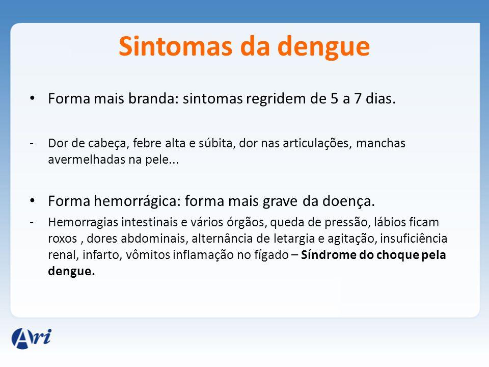 Sintomas da dengue Forma mais branda: sintomas regridem de 5 a 7 dias.