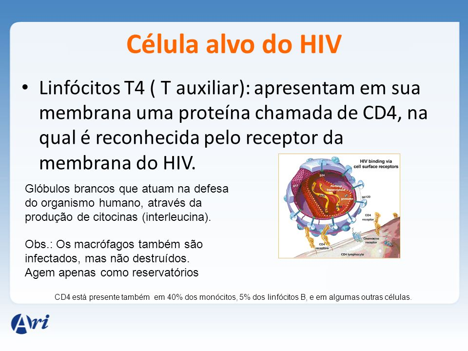 Célula alvo do HIV