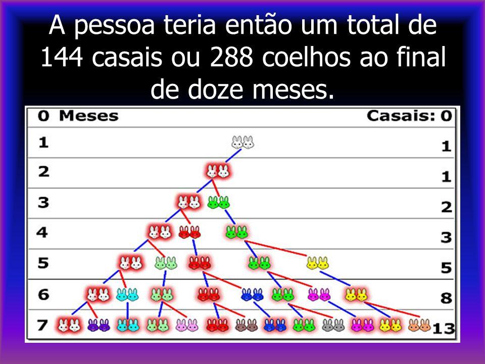 A pessoa teria então um total de 144 casais ou 288 coelhos ao final de doze meses.
