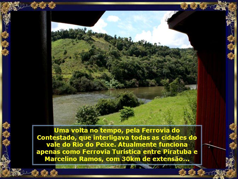 IMG_9071 - PIRATUBA - PASSEIO DE MARIA FUMAÇA-680.jpg
