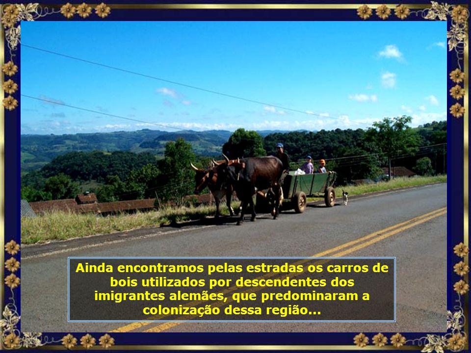 P0016148 - PIRATUBA - CAMINHO DA HIDRELÉTRICA - CARRO DE BOI-680.jpg