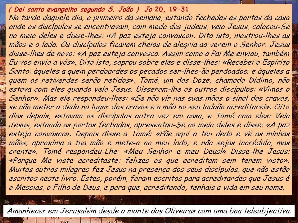 ( Del santo evangelho segundo S. João ) Jo 20, 19-31