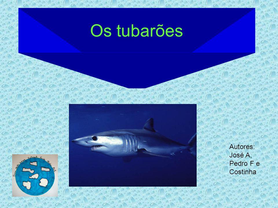 Os tubarões Autores: José A, Pedro F e Costinha