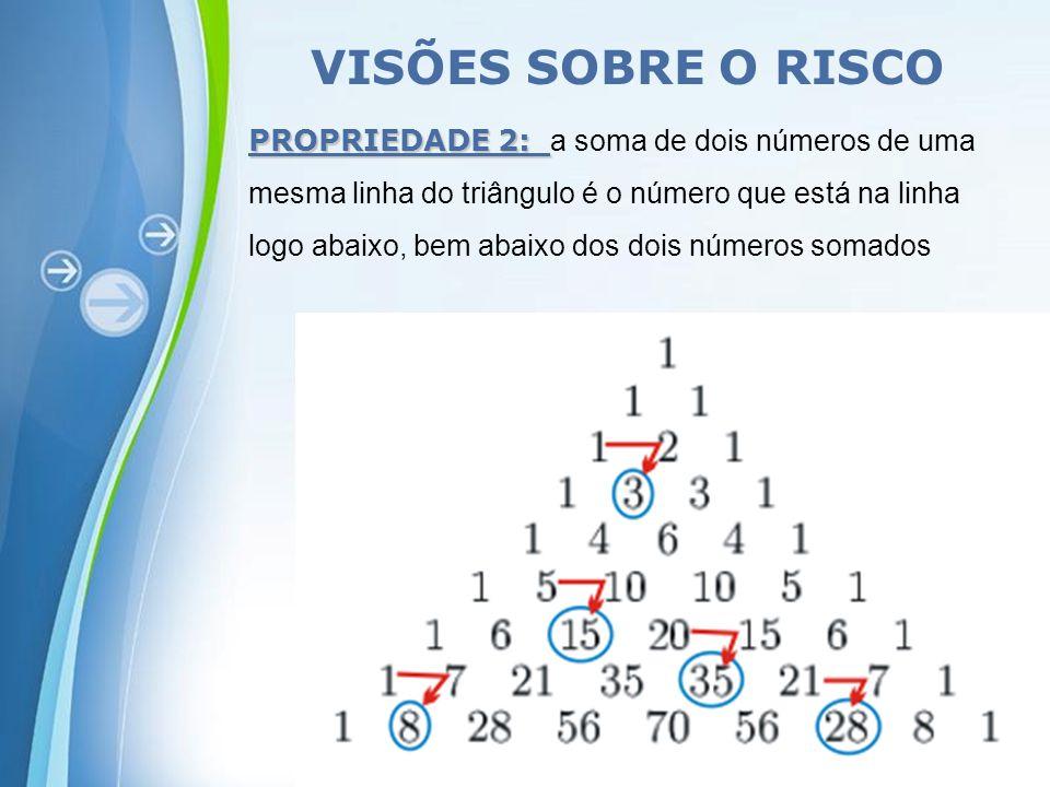 VISÕES SOBRE O RISCO