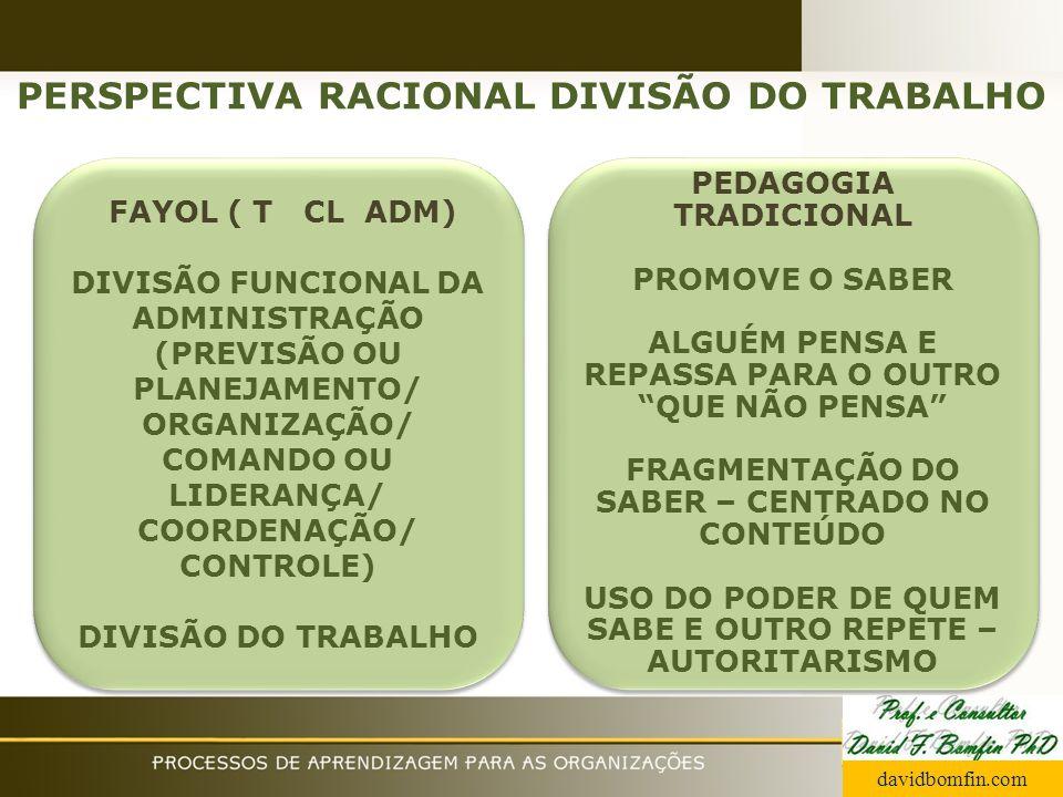 PERSPECTIVA RACIONAL DIVISÃO DO TRABALHO