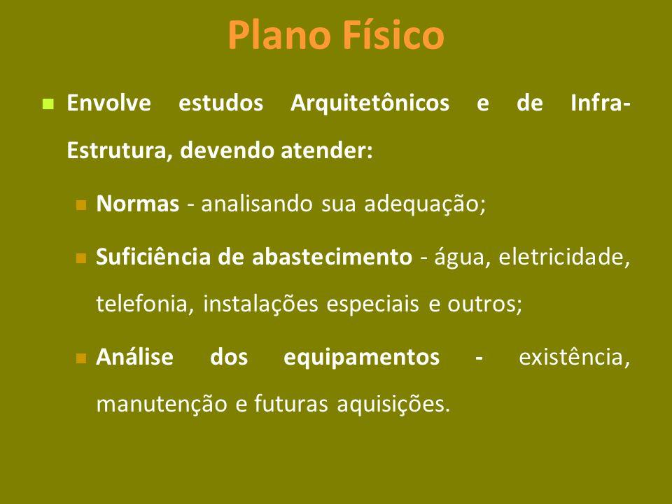 Plano Físico Envolve estudos Arquitetônicos e de Infra-Estrutura, devendo atender: Normas - analisando sua adequação;