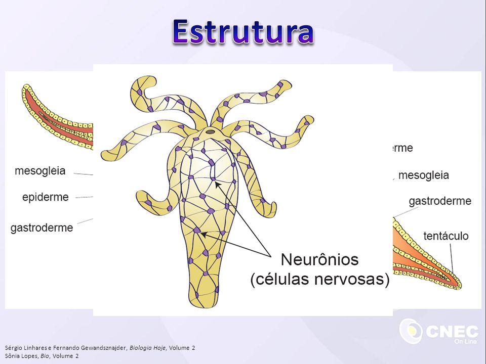 Estrutura Sérgio Linhares e Fernando Gewandsznajder, Biologia Hoje, Volume 2.