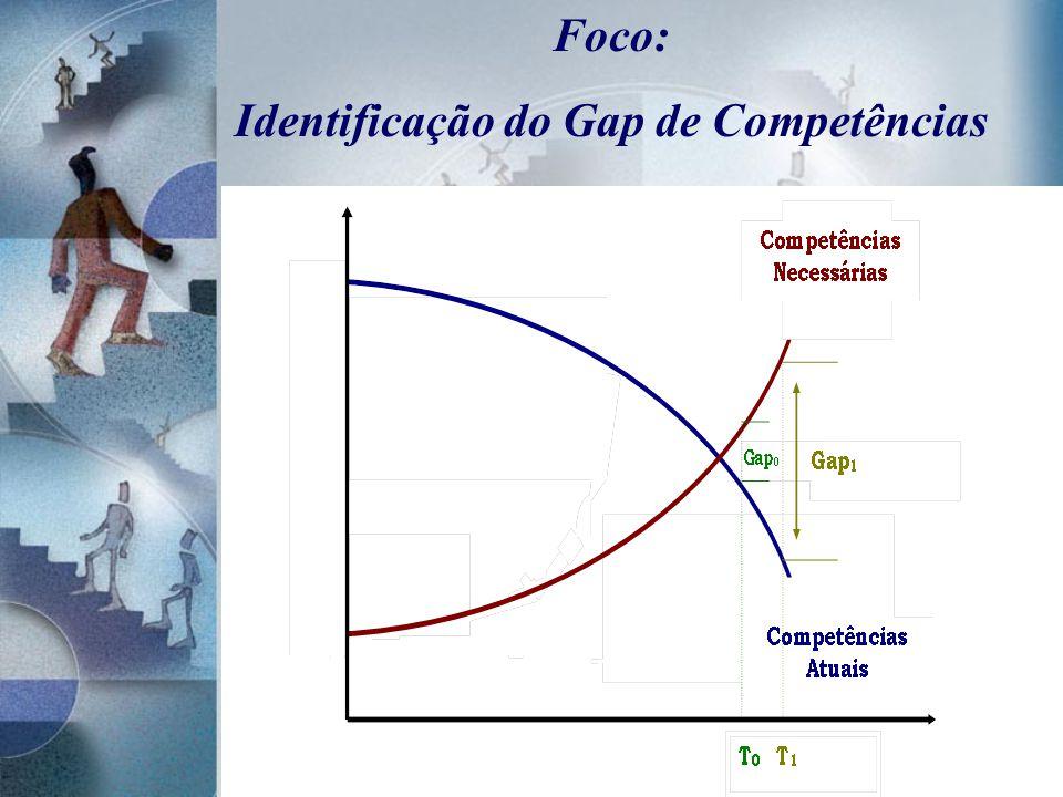 Identificação do Gap de Competências