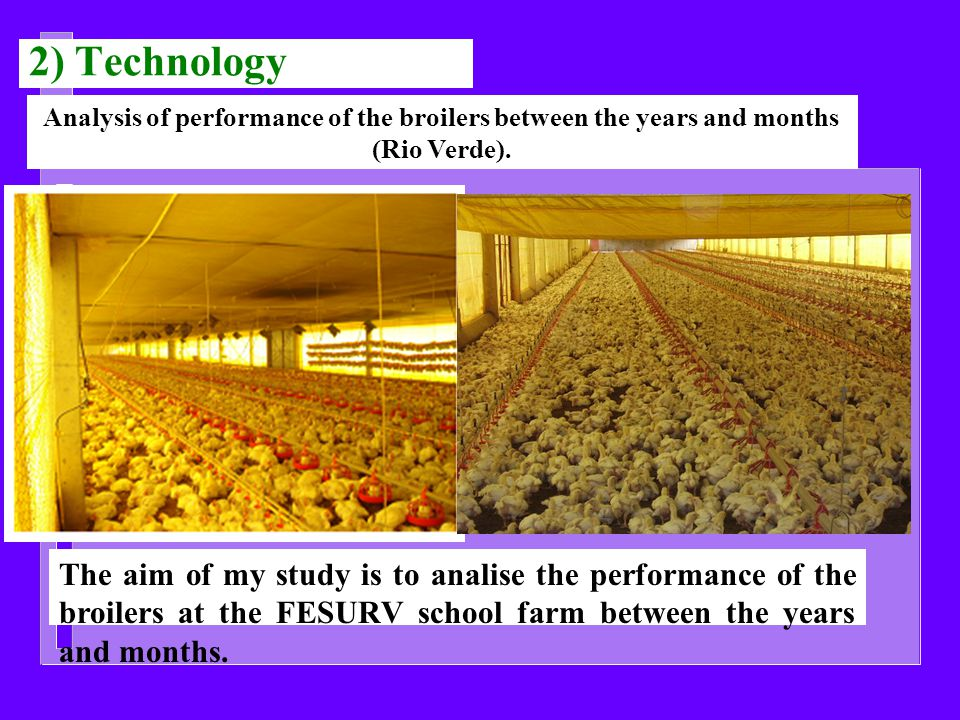 2) Technology Analysis of performance of the broilers between the years and months (Rio Verde).