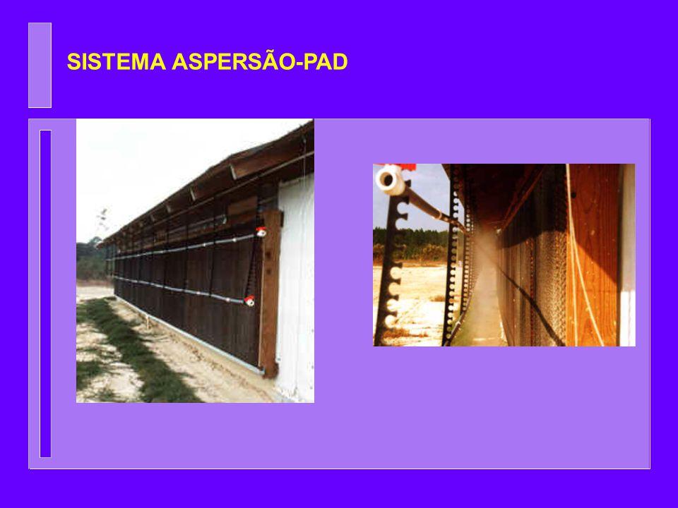 SISTEMA ASPERSÃO-PAD