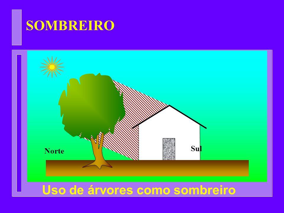 SOMBREIRO Sul Norte Uso de árvores como sombreiro