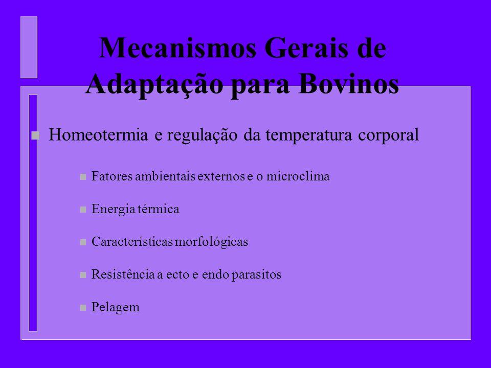 Mecanismos Gerais de Adaptação para Bovinos