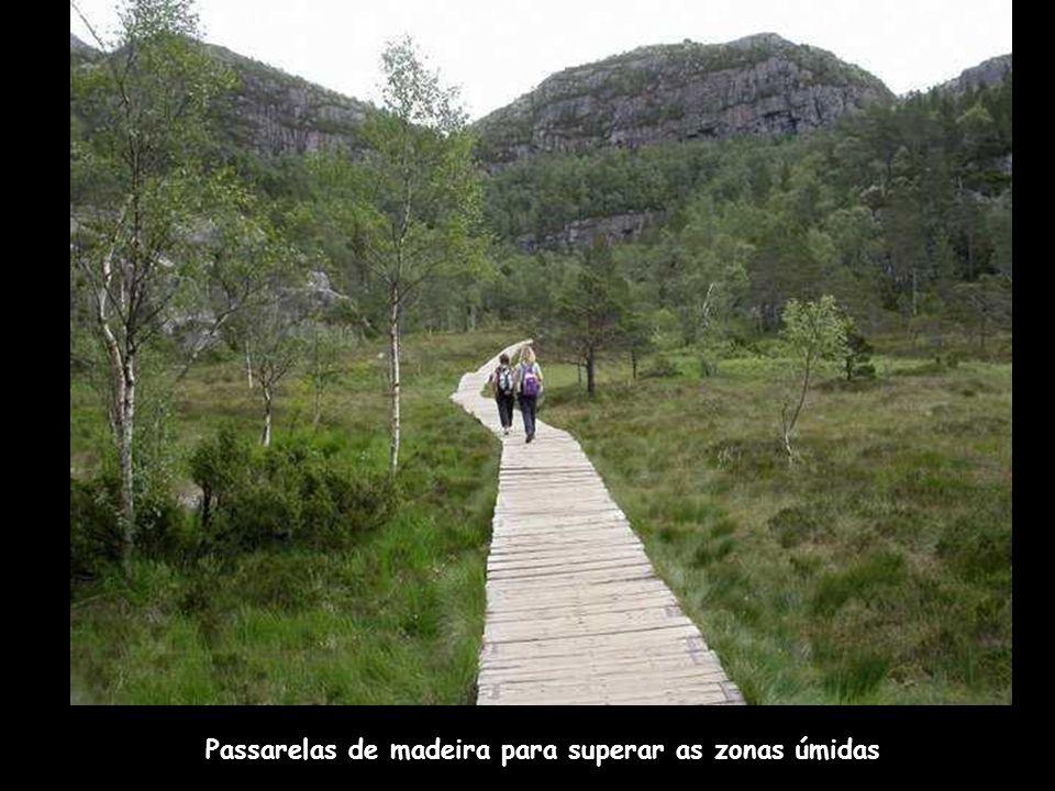 Passarelas de madeira para superar as zonas úmidas