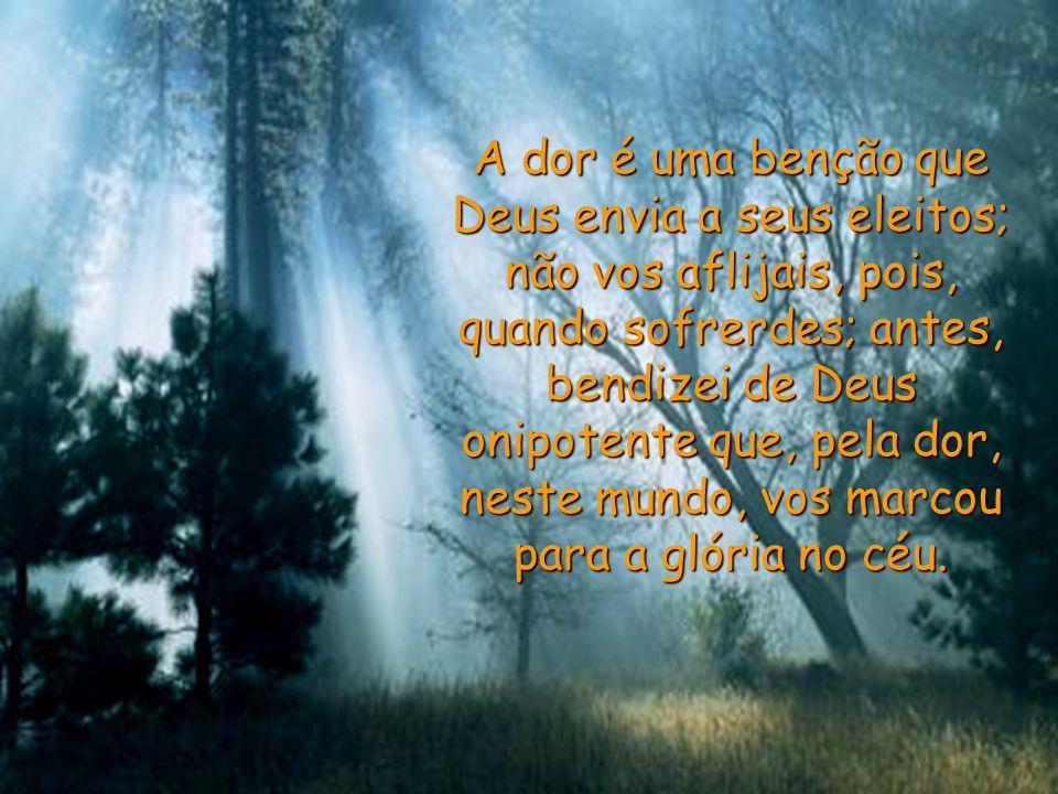 A dor é uma benção que Deus envia a seus eleitos; não vos aflijais, pois, quando sofrerdes; antes, bendizei de Deus onipotente que, pela dor, neste mundo, vos marcou para a glória no céu.