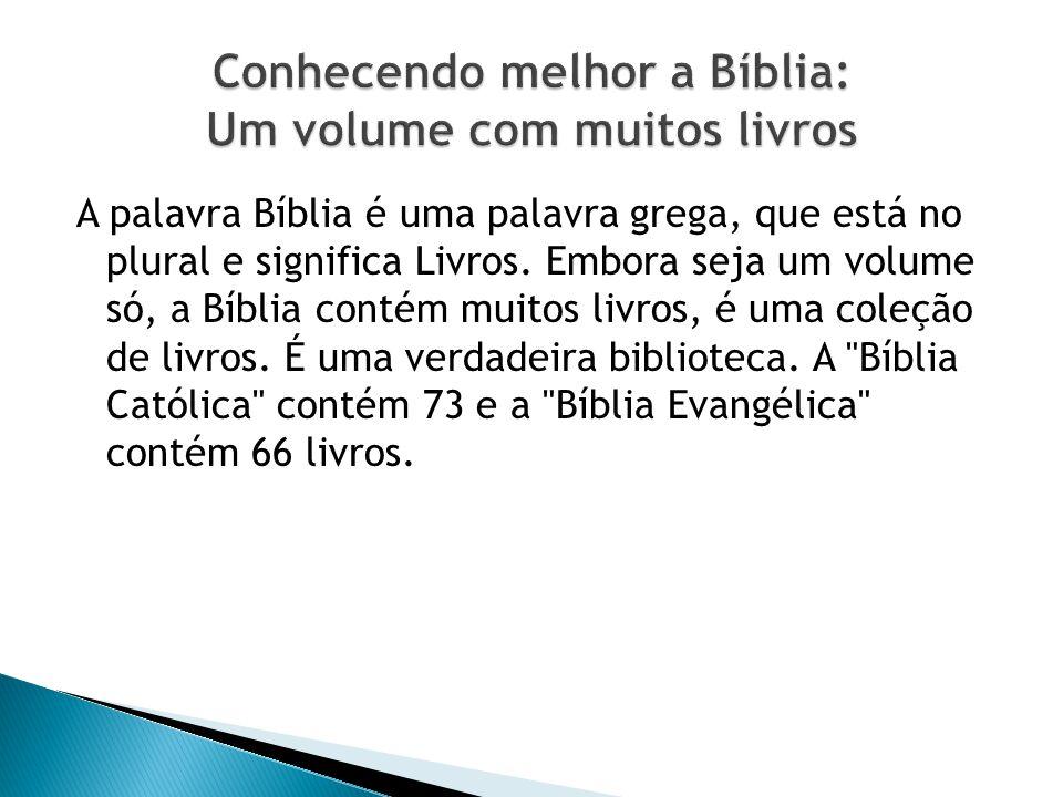 Conhecendo melhor a Bíblia: Um volume com muitos livros