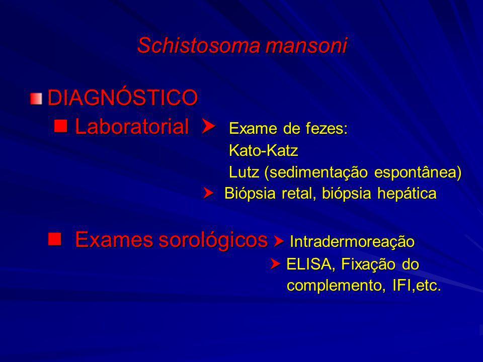  Laboratorial  Exame de fezes:
