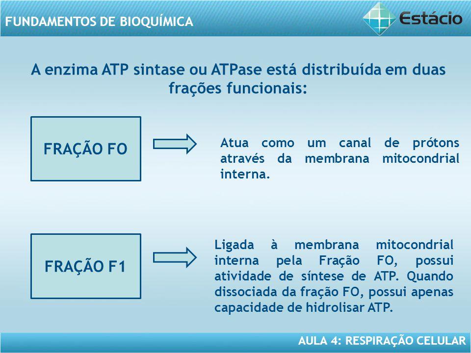 A enzima ATP sintase ou ATPase está distribuída em duas frações funcionais:
