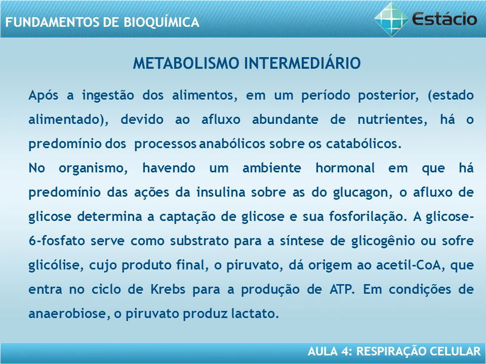 METABOLISMO INTERMEDIÁRIO