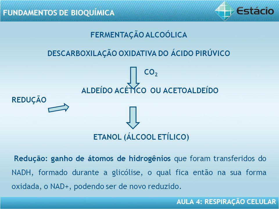 DESCARBOXILAÇÃO OXIDATIVA DO ÁCIDO PIRÚVICO