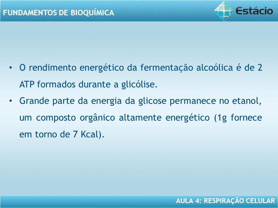 O rendimento energético da fermentação alcoólica é de 2 ATP formados durante a glicólise.