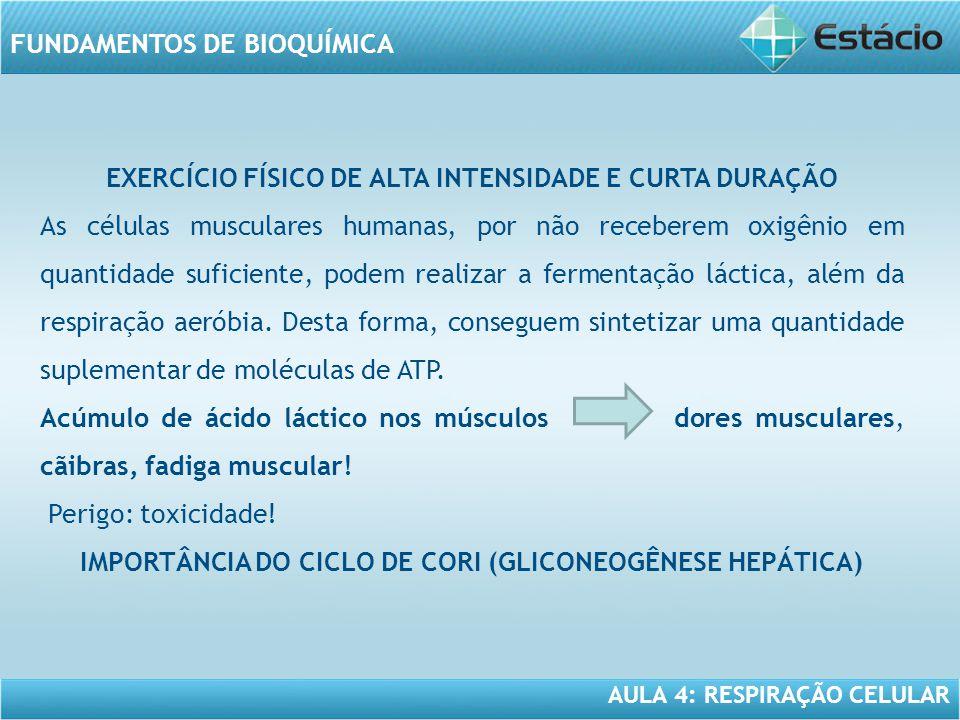 EXERCÍCIO FÍSICO DE ALTA INTENSIDADE E CURTA DURAÇÃO