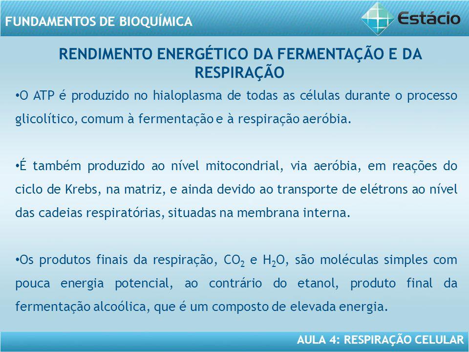 RENDIMENTO ENERGÉTICO DA FERMENTAÇÃO E DA RESPIRAÇÃO