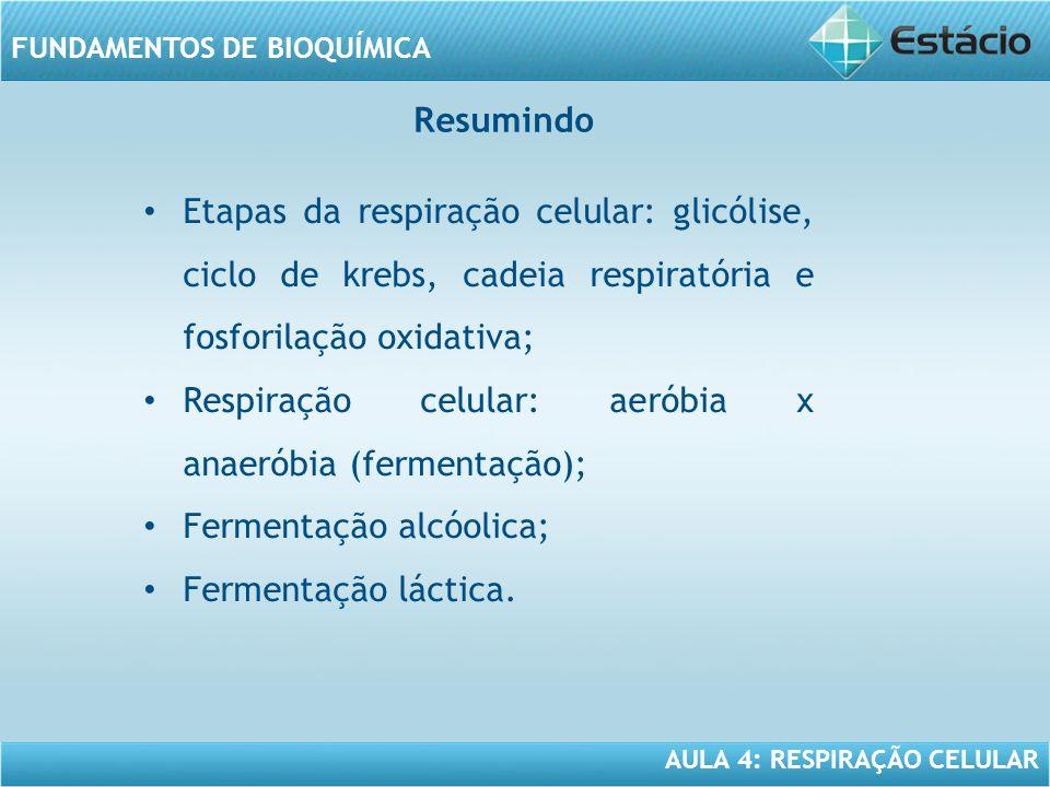 Resumindo Etapas da respiração celular: glicólise, ciclo de krebs, cadeia respiratória e fosforilação oxidativa;