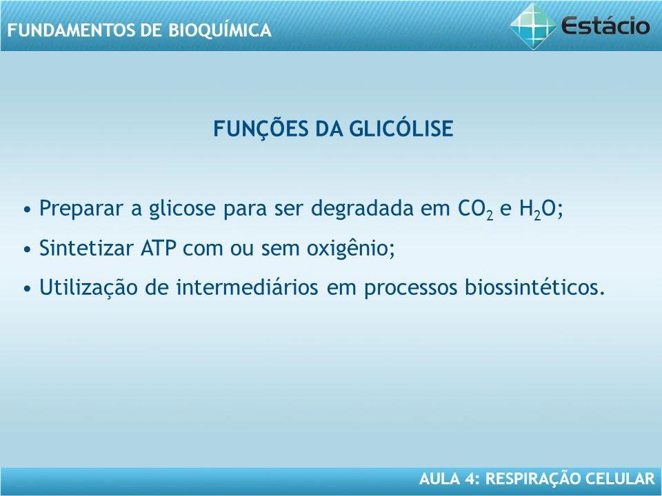 FUNÇÕES DA GLICÓLISE • Preparar a glicose para ser degradada em CO2 e H2O; • Sintetizar ATP com ou sem oxigênio;