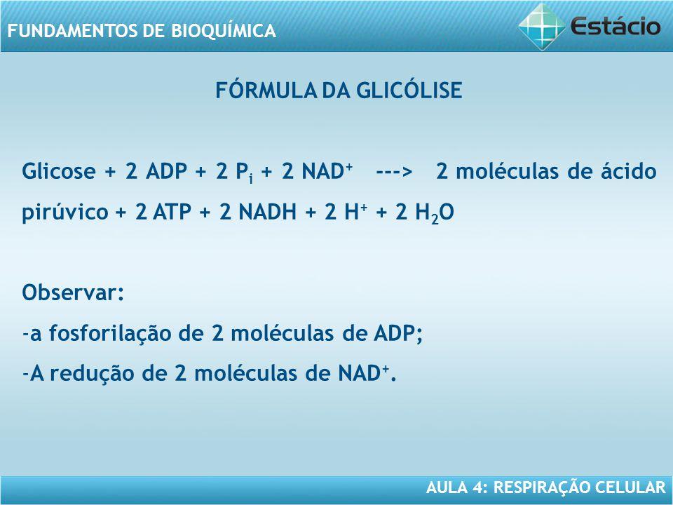 FÓRMULA DA GLICÓLISE Glicose + 2 ADP + 2 Pi + 2 NAD+ ---> 2 moléculas de ácido pirúvico + 2 ATP + 2 NADH + 2 H+ + 2 H2O.