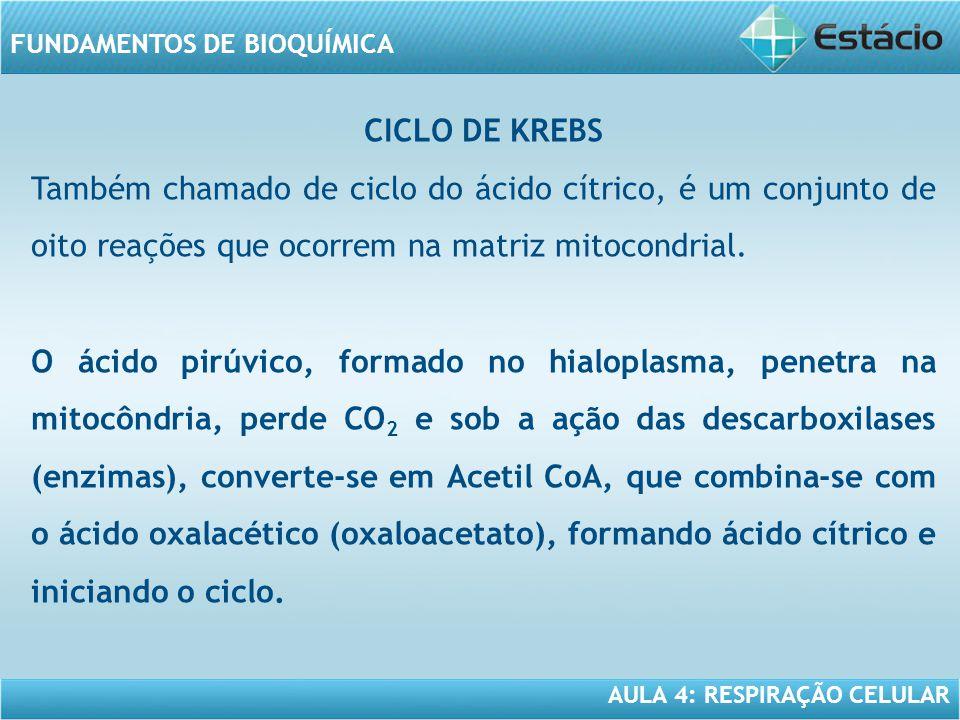 CICLO DE KREBS Também chamado de ciclo do ácido cítrico, é um conjunto de oito reações que ocorrem na matriz mitocondrial.