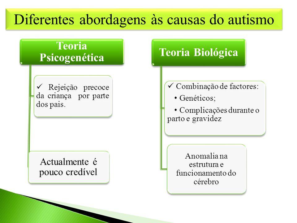Diferentes abordagens às causas do autismo