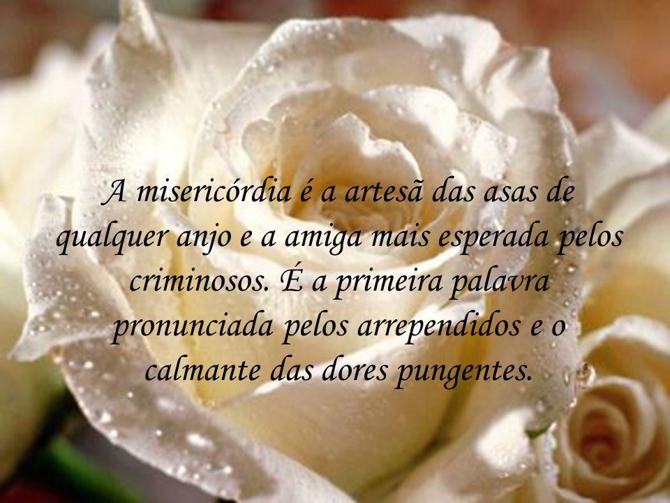A misericórdia é a artesã das asas de qualquer anjo e a amiga mais esperada pelos criminosos.