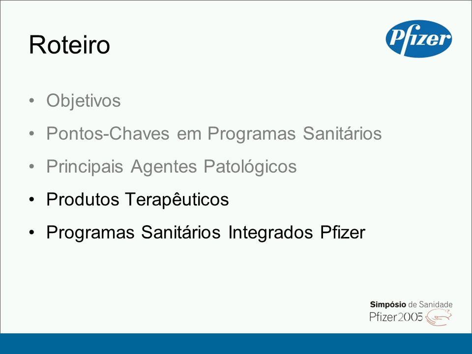 Roteiro Objetivos Pontos-Chaves em Programas Sanitários