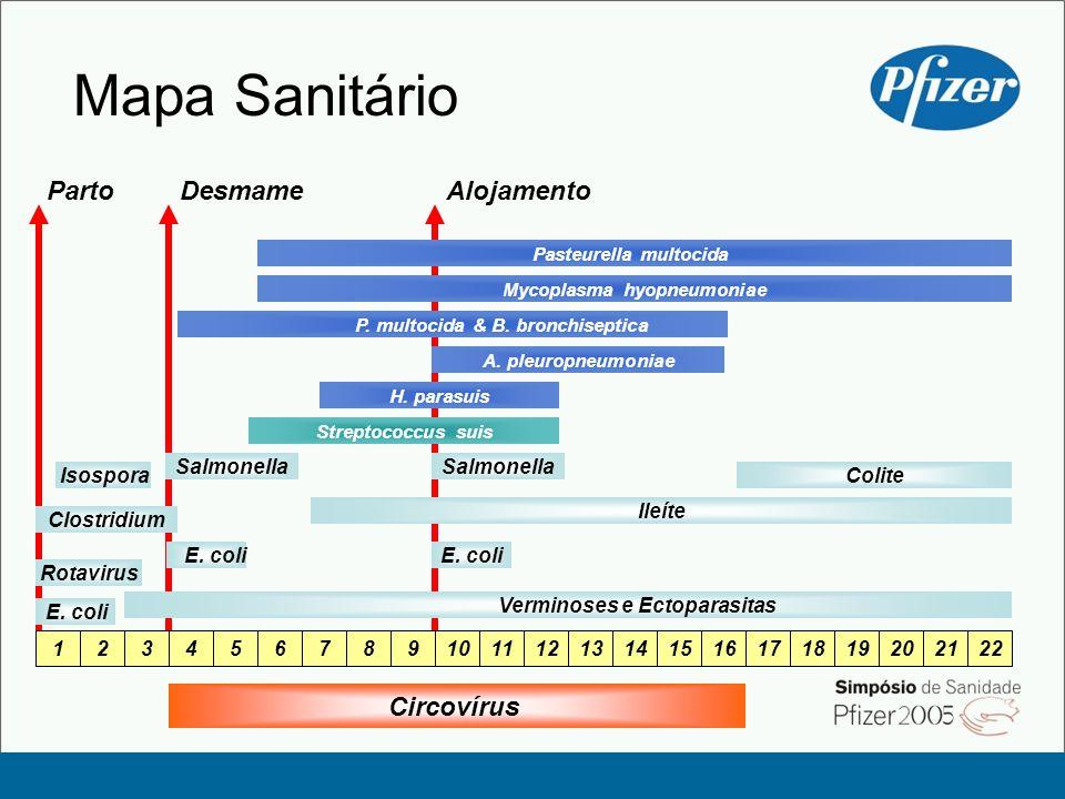 Mapa Sanitário Parto Desmame Alojamento Circovírus Salmonella