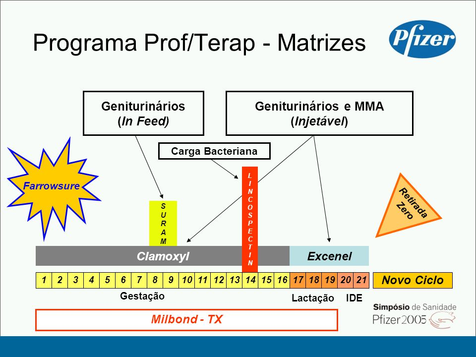 Programa Prof/Terap - Matrizes