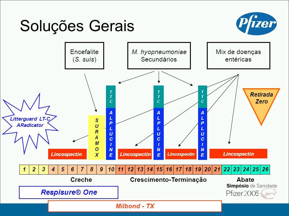 Soluções Gerais Respisure® One Encefalite (S. suis) M. hyopneumoniae