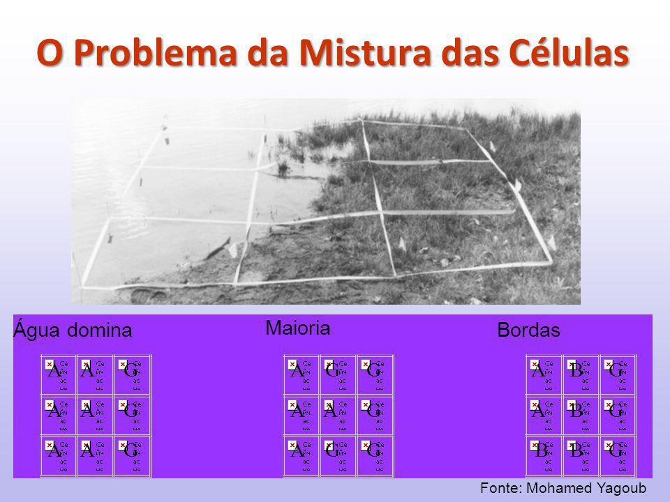 O Problema da Mistura das Células