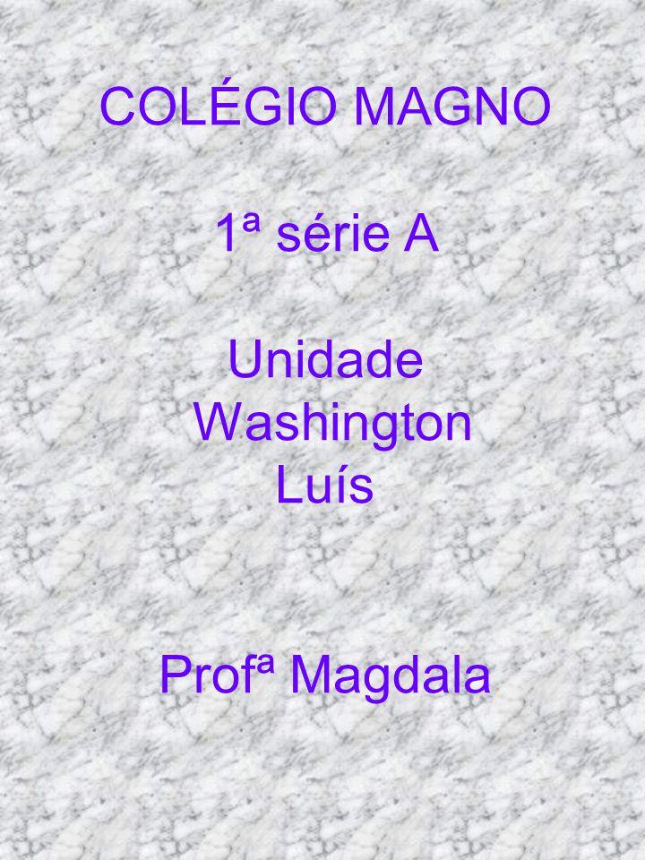 COLÉGIO MAGNO 1ª série A Unidade Washington Luís Profª Magdala