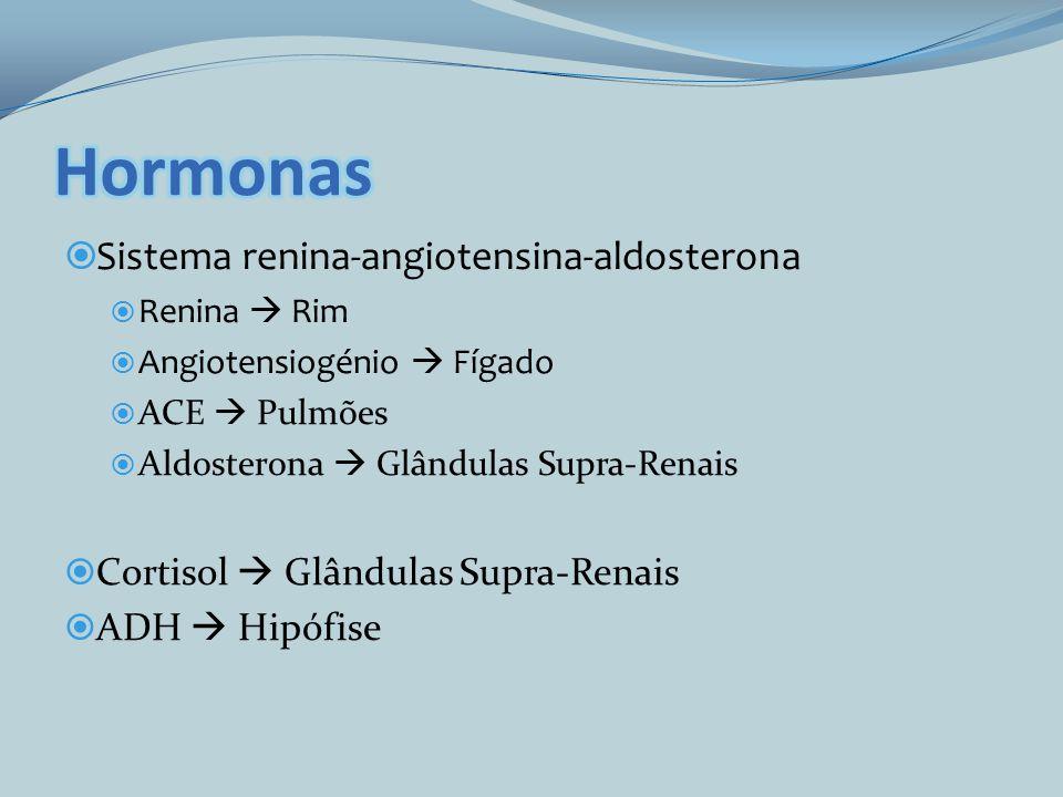 Hormonas Sistema renina-angiotensina-aldosterona