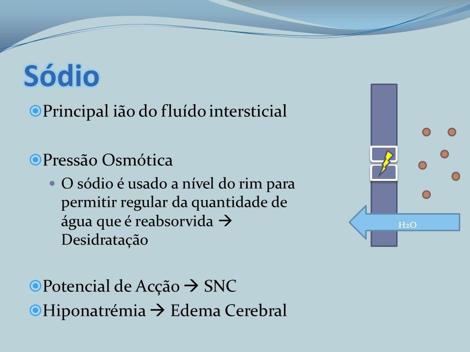 Sódio Principal ião do fluído intersticial Pressão Osmótica