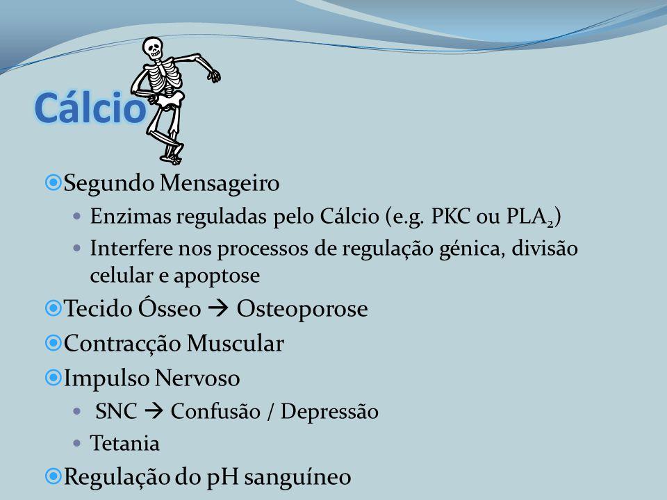 Cálcio Segundo Mensageiro Tecido Ósseo  Osteoporose