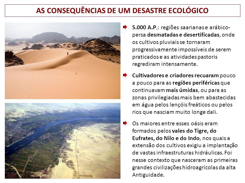 AS CONSEQUÊNCIAS DE UM DESASTRE ECOLÓGICO