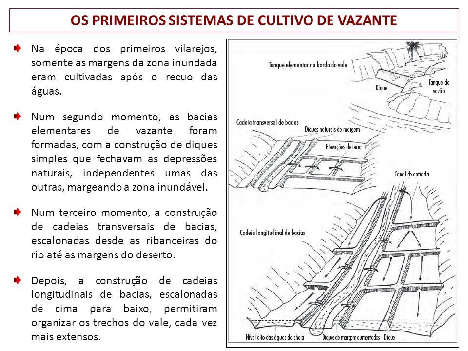 OS PRIMEIROS SISTEMAS DE CULTIVO DE VAZANTE