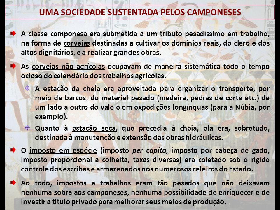 UMA SOCIEDADE SUSTENTADA PELOS CAMPONESES